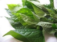 Betal leaf 100g