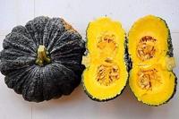 Pumpkin sz XS 500gr-1kg